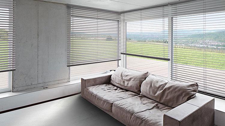 Angebote aus Sichtschutz und Sonnenschutz